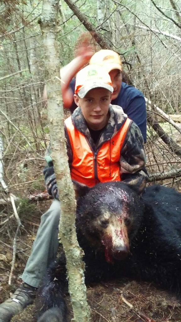 Fall Black Bear Hunts In Maine Fully Guided Lakeside Lodging